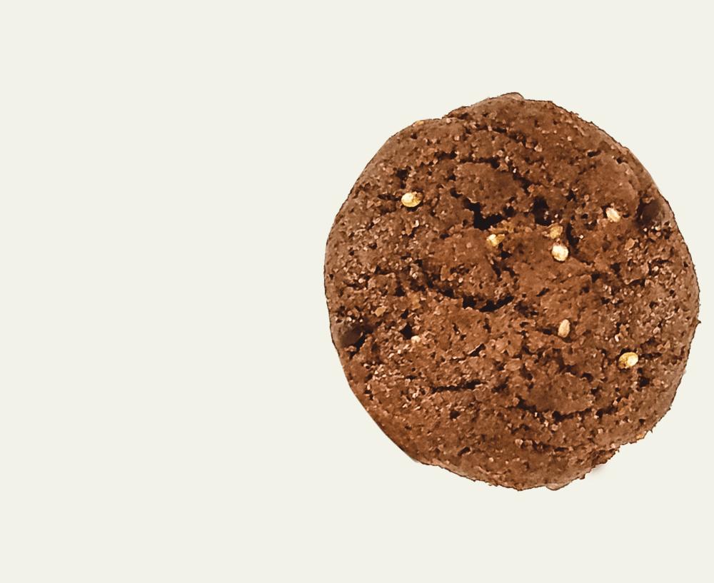 saudeenergia-produtos-cookie